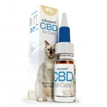 Olej CBD 4% dla kotów