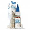 CBD Oil 2% For Cats